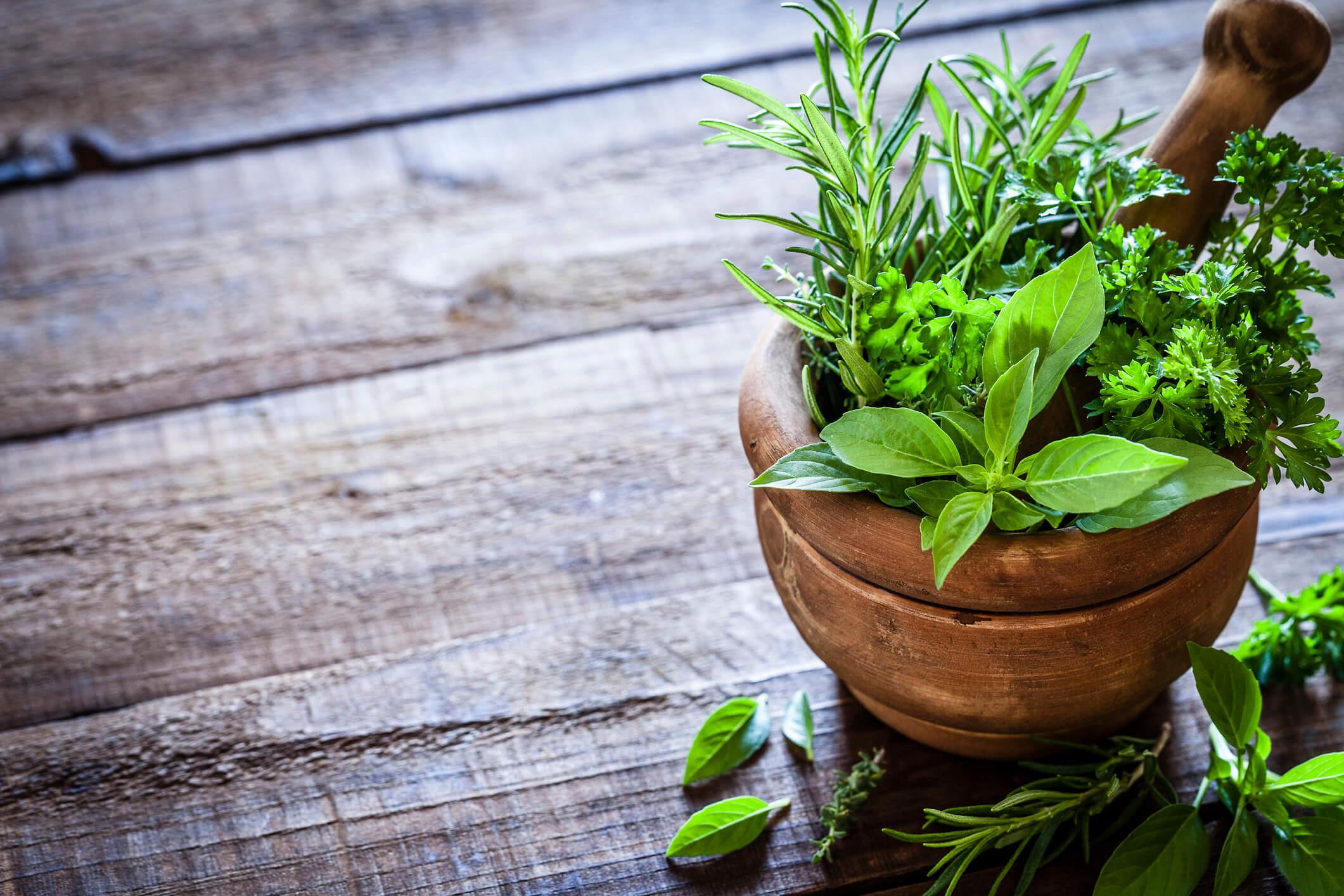 Medicina Natural – O que é e quais são seus benefícios